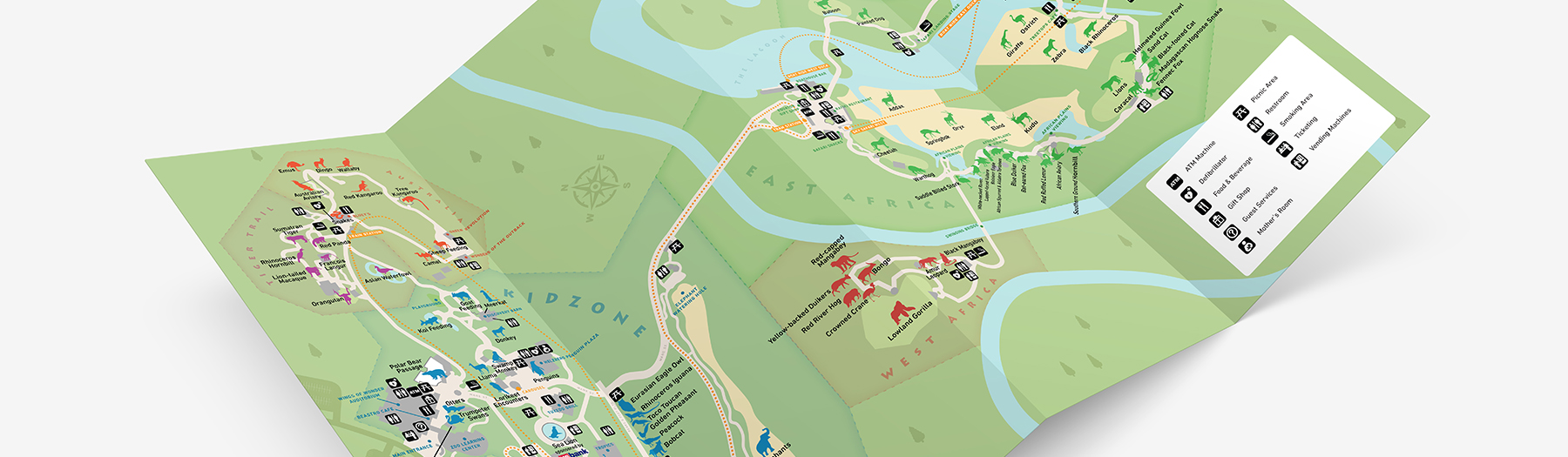 Kansas City Web Design And Print Material For The New Kansas City Zoo Map