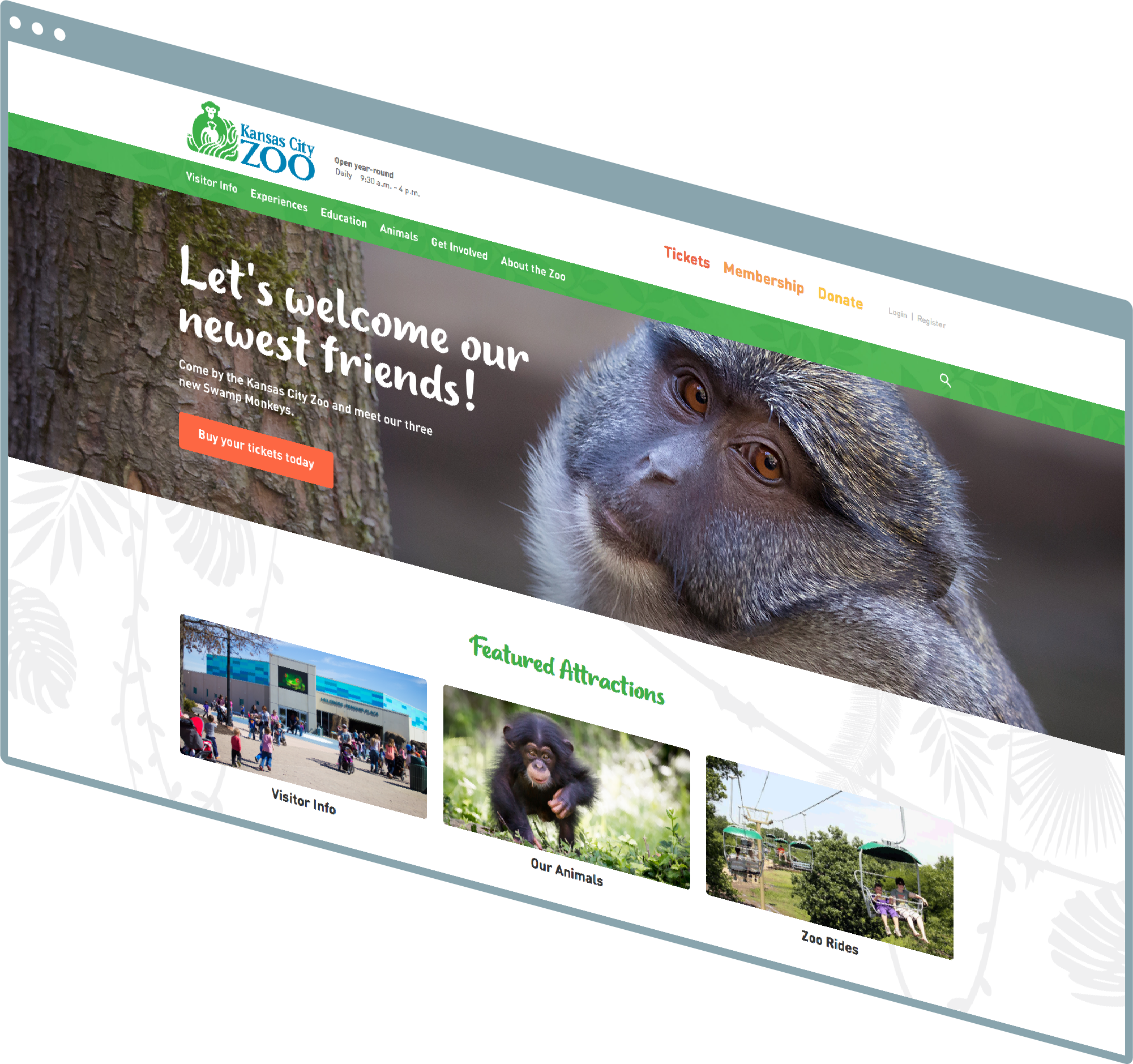 Kansas City Web Design And Kansas City Web Development Portfolio - Kansas City Zoo